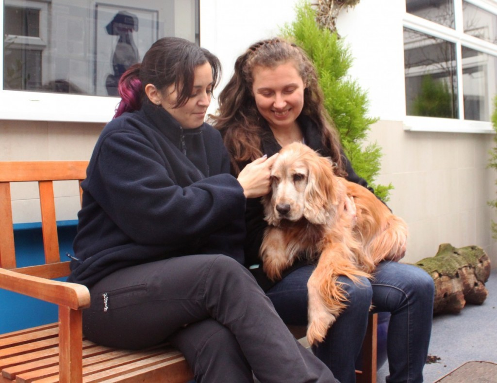 Together for Animals - Animal Welfare Officers Help Deaf and Blind Dog and his Family