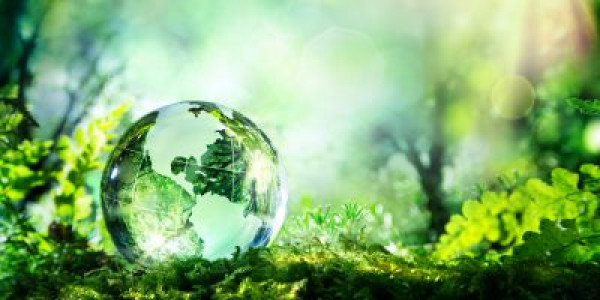 Payroll Giving supporting the environment